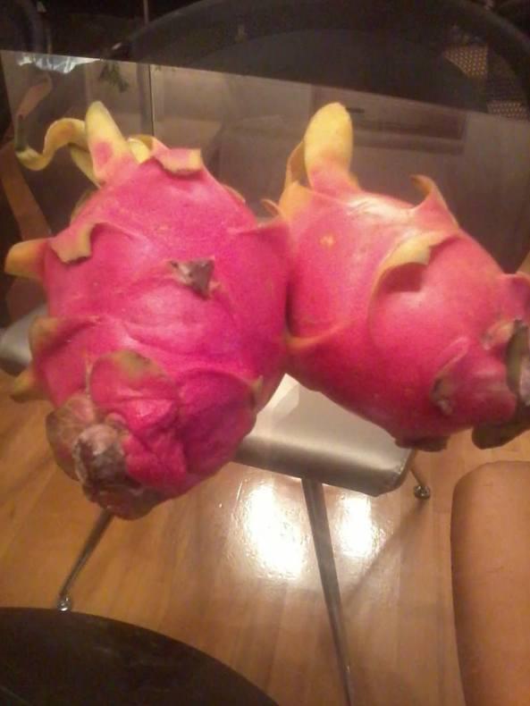 buah nada